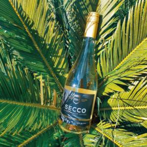 SECCO het alternatief voor een fruitige bubbel wijn heerlijk fris en zeker lekker in combinatie met ROTLING